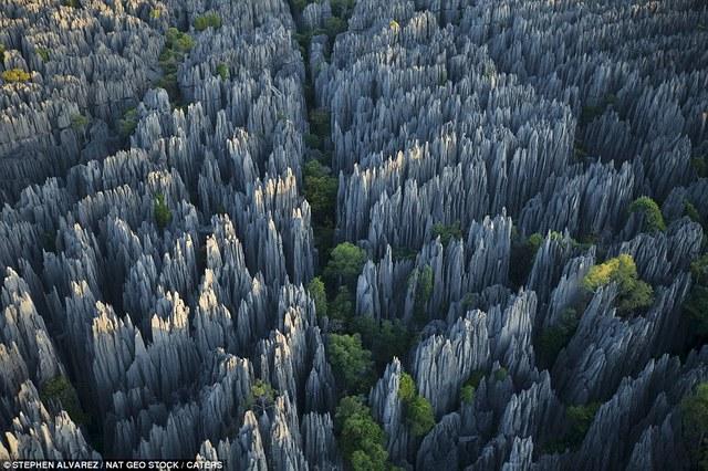 Forêt de pierres, Madagascar