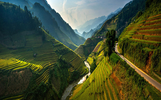 Les cultures de riz en terrasse de Mu Cang Chai , Vietnam