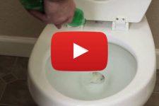 unclog-toilet