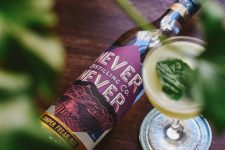 win-never-never-distilling-gin