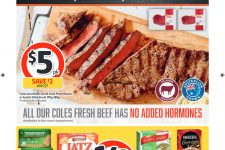 Coles-Catalogue-NSW-May-1st-to-7-2019_001