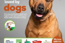 Woolworths-Pet-Catalogue-May-29-to-June-04-2019_001