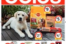 Coles-Pet-Catalogue-June-12-to-18-2019_001