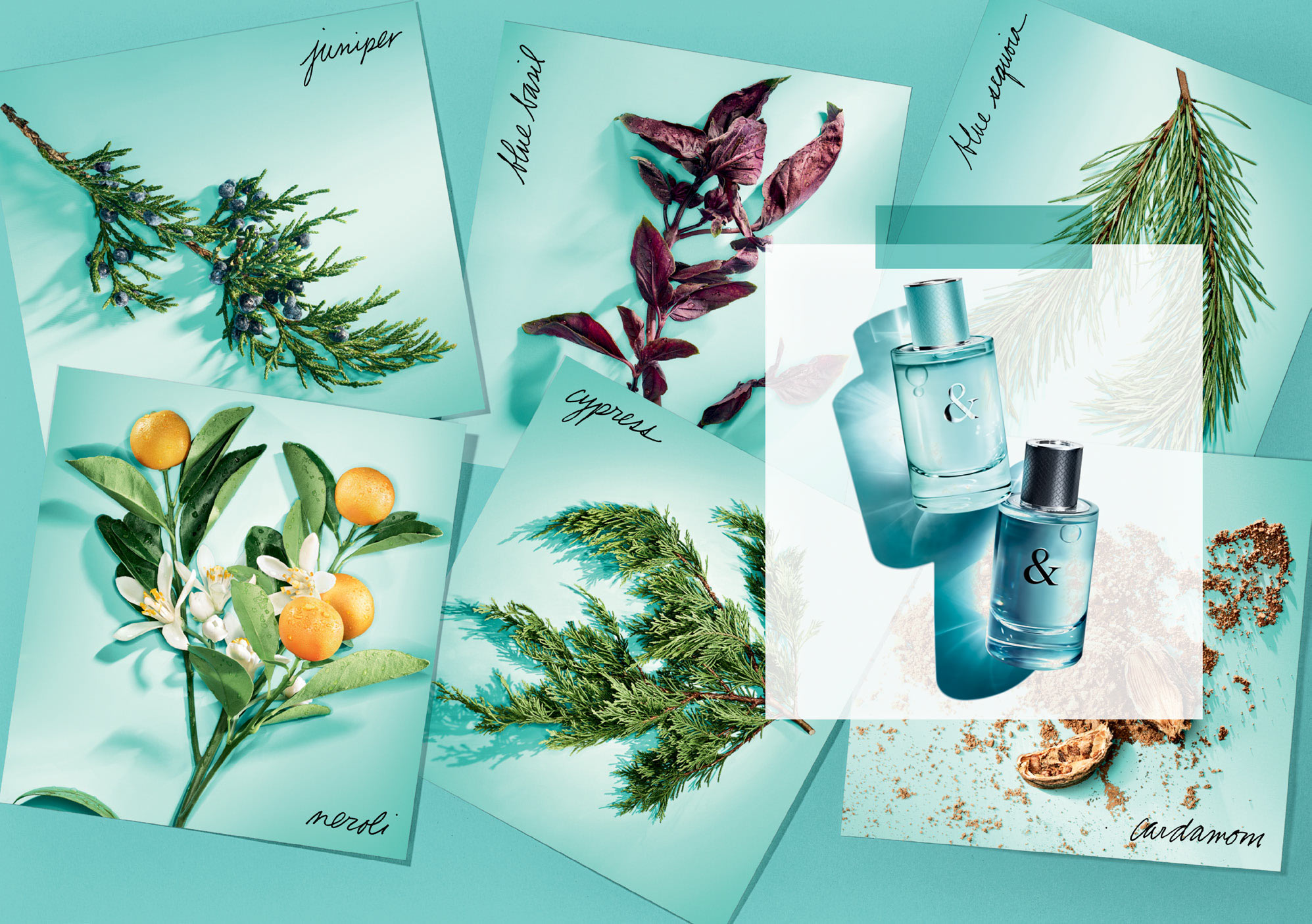 WIN Tiffany & Love Fragrances For Him & For Her